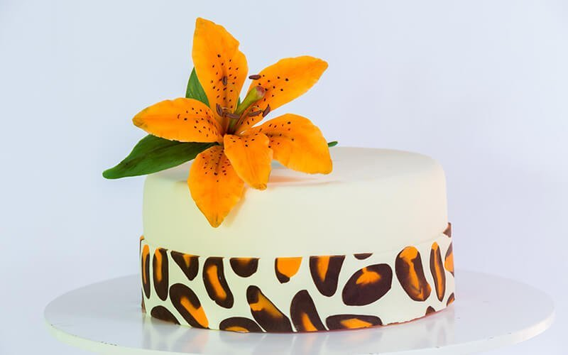 Zebra torte 2